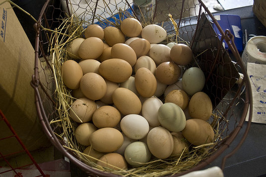 Post image for Un-diversification: Does it ever make sense to put your eggs in one basket?